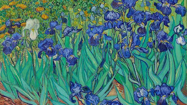 Vincent Van Gogh Zoom Background (2)