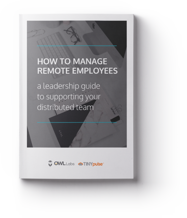 How to Manage Remote Employees eBook